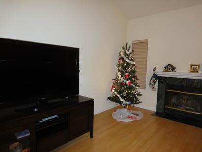 2010christmas