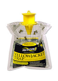 Yellowjackettrap