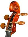 Cellohead