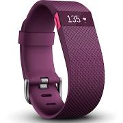 Fitbit_2